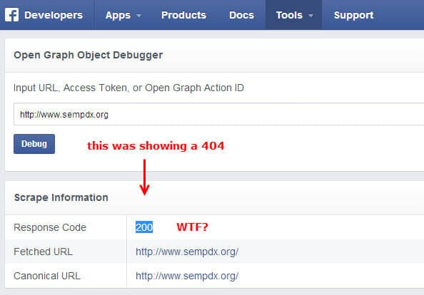 Facebook Debugger shows a 404 too!