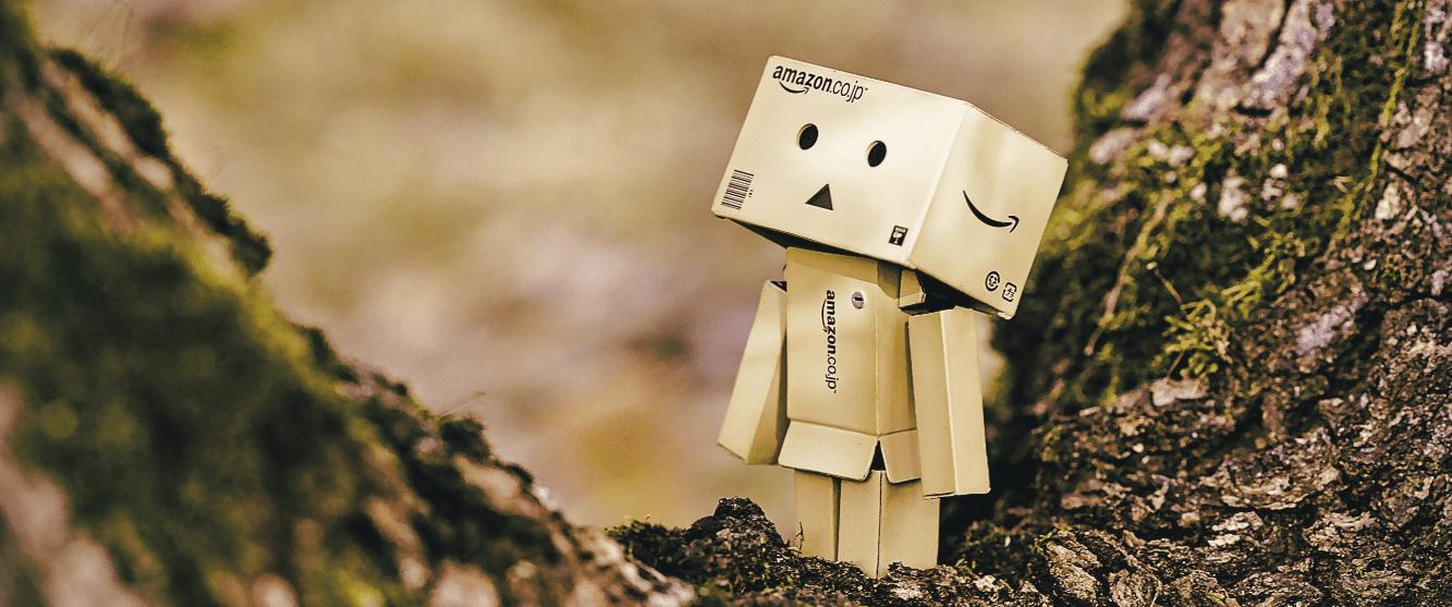 Amazon Box by Daniel Eledut